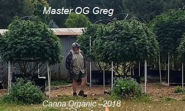 2018 Canna Organic Preview